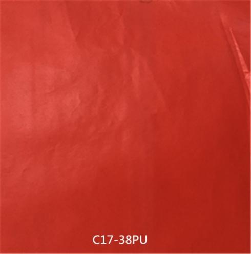 C17-38PU