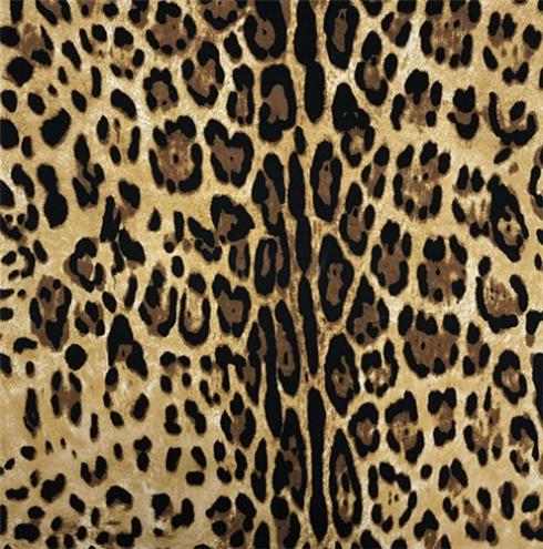 HT-豹纹